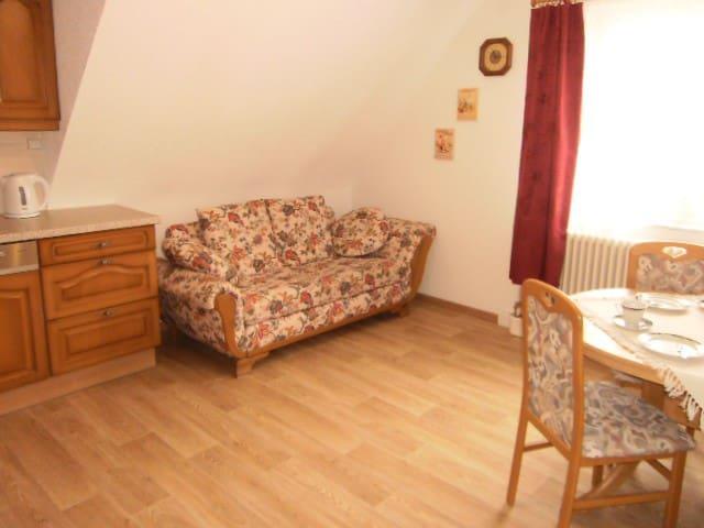Große 2 Zimmerwohnung OG (mit Preisstaffelung)