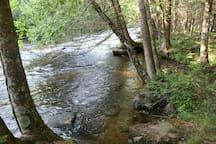 More of the Oconto River