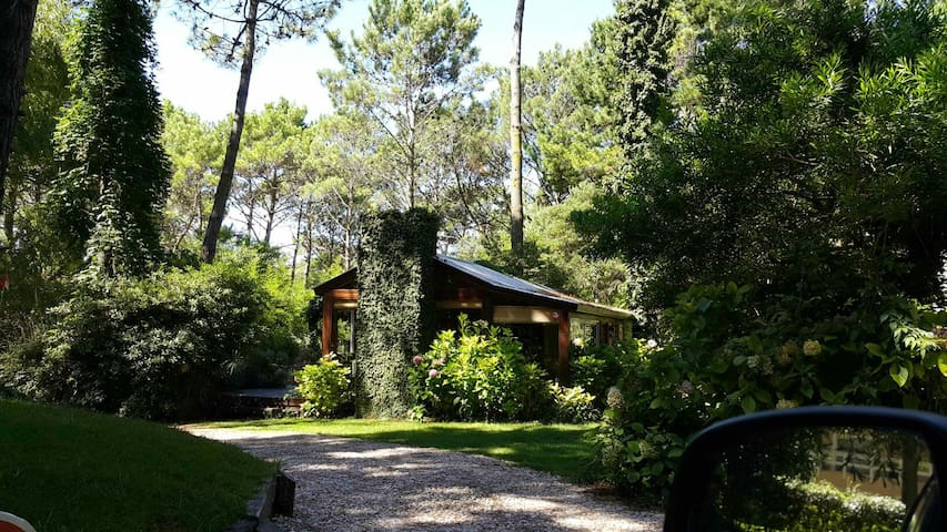 Cabaña encantada en bosque Cariló - Cariló - Cottage