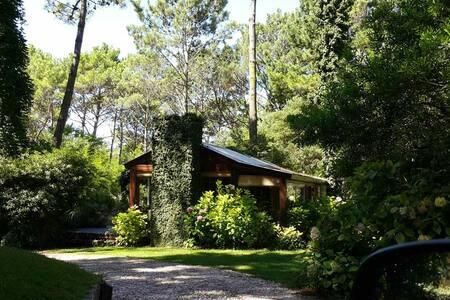 Cabaña encantada en bosque Cariló - Cariló - Blockhütte