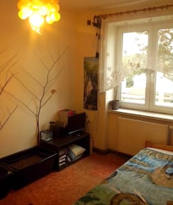 Cosy Room for One Traveler - Karlovy Vary nearby - Chodov