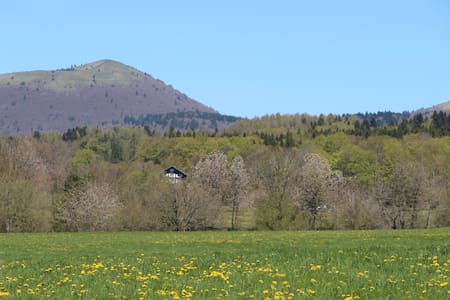 Chalet 6 bedroons in the volcanos area of Auvergne - Ceyssat - Almhütte