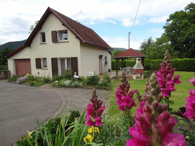 """Gîte """" Le Jardin d'Elisa"""" - Niederhaslach - Naturstuga"""