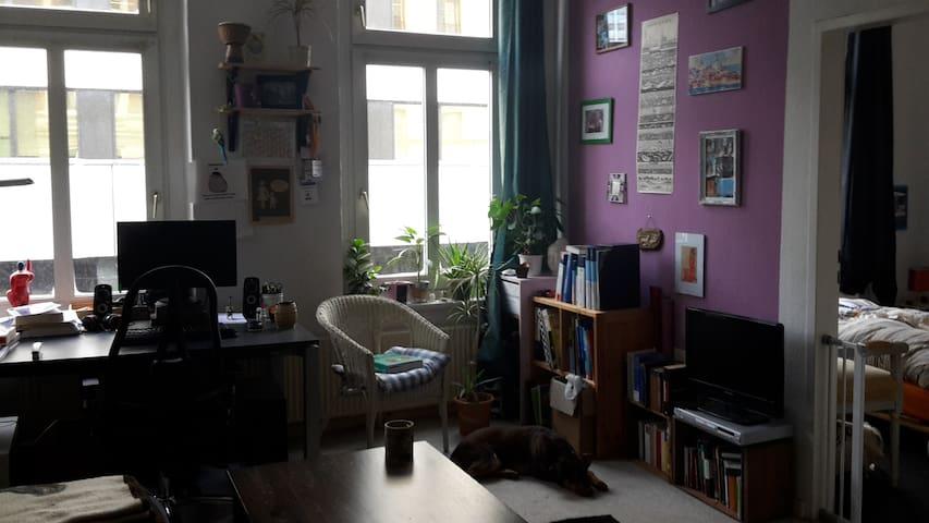Gemütliche Altbauwohnung, zentral, Nähe Alster/Hbf