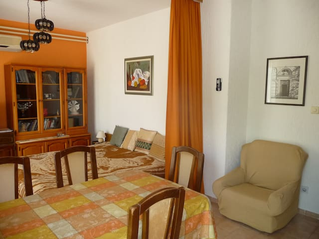 Large Apartment with spacious terrace.