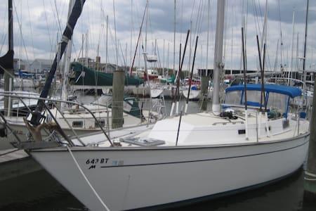Slumber On Private Sailboat On Annapolis Harbor