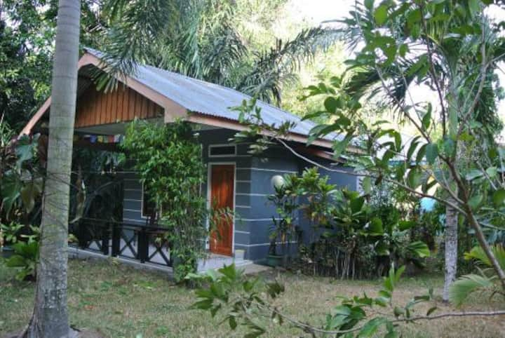 Experince Tangkoko with Tangkoko Lodge