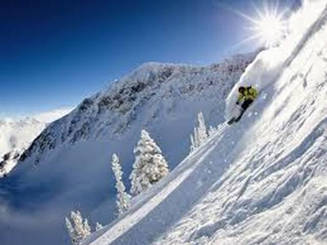Snowbird Ski Resort Condo