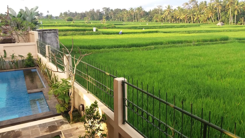 Rice paddies paradise 5 minutes from Ubud - Gianyar - Villa