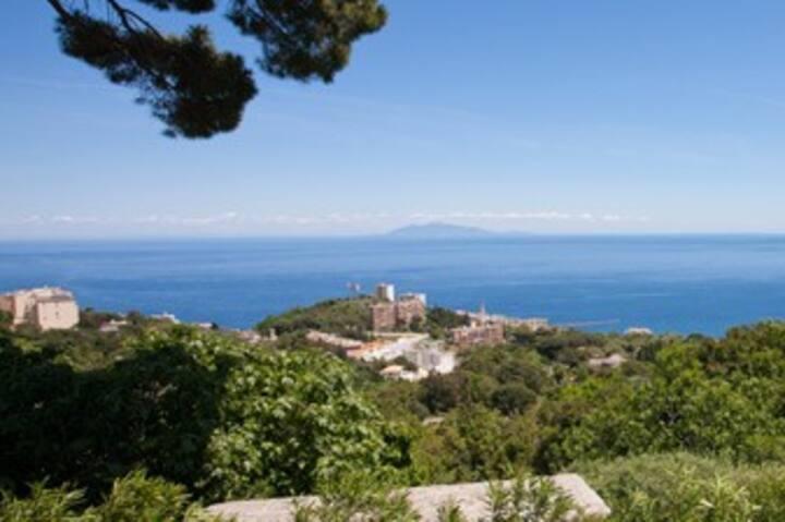 Logement 2 personnes vue mer panoramique à Bastia