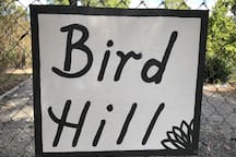 Welcome to Bird Hill Cottage