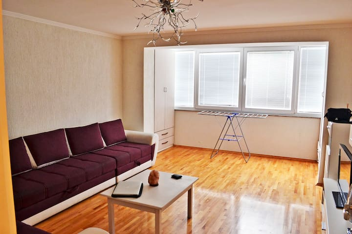 Nice apartment close to City Centre - Sarajevo - Apartment