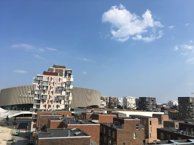 View from building's rooftop terrace