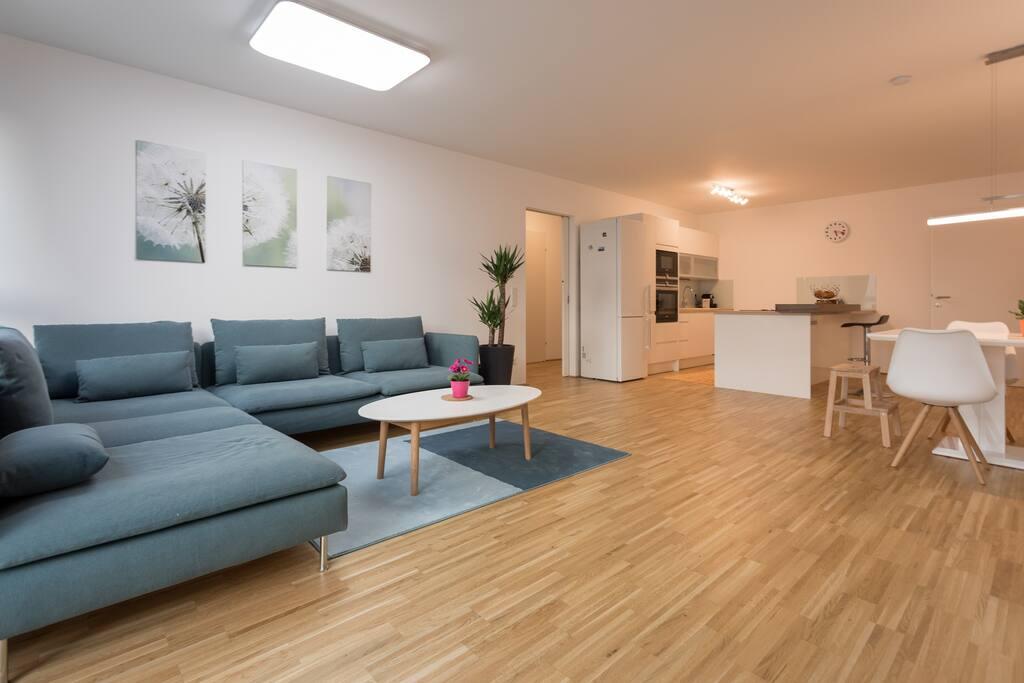 120 3 Bedroom 2 Bathroom Apartment With Balcony Condominiums For Rent In Vienna Wien Austria