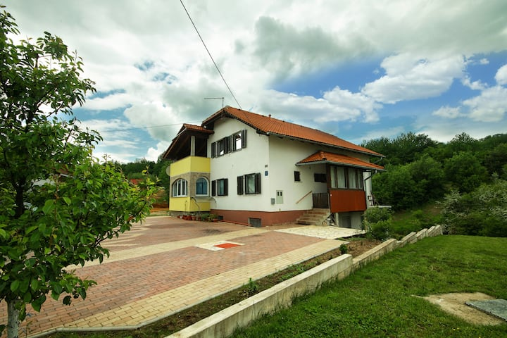 House D&A near Plitvice Lakes
