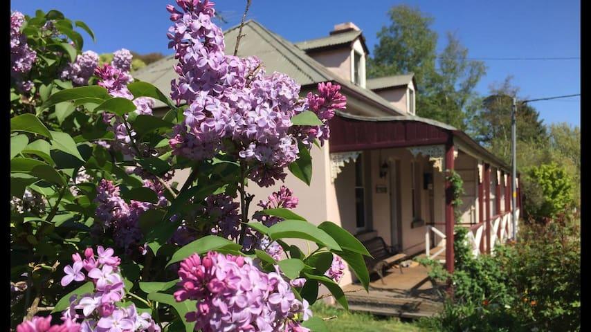 Historic Blue Mountains Cottage - Mount Victoria - Huis
