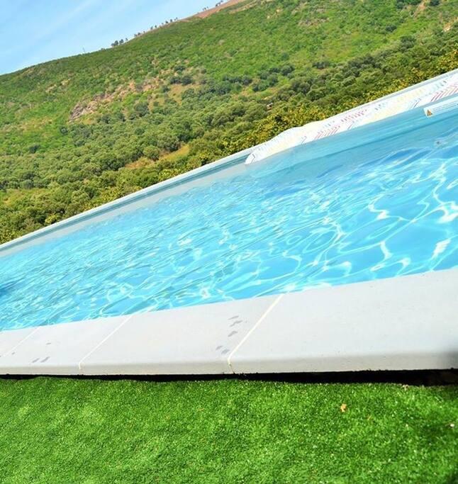 piscine face au maquis
