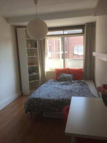 Cozy and sunny room in shared flat - Den Haag - Wohnung