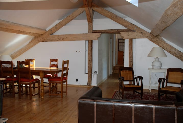 the loft apartment - Doussard - Apartament