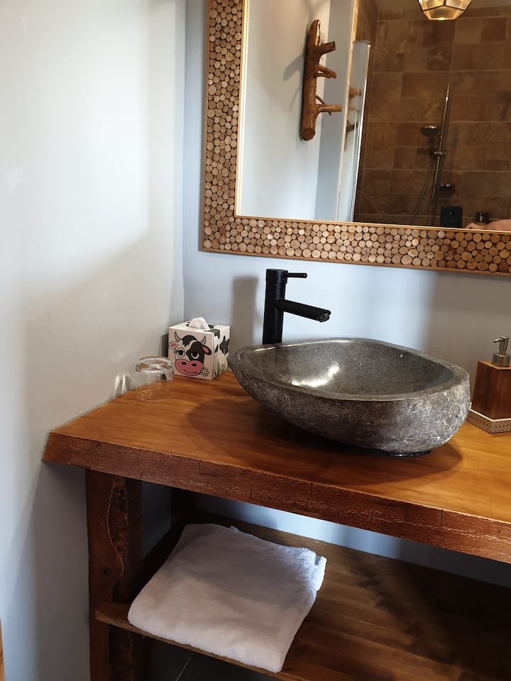 Chambre style chalet, douche et wc séparé, spa