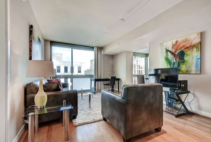 Luxury Furnished 2 Bedroom Apartment in Newseum!