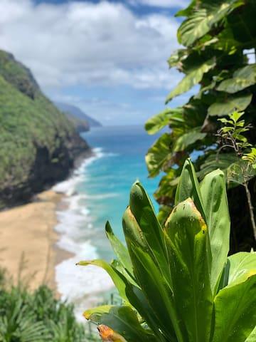Kauai North Shore Guide