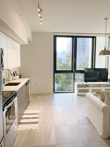 Miami Brickell Downtown, Luxurious Apt