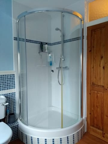 Shower within bathroom