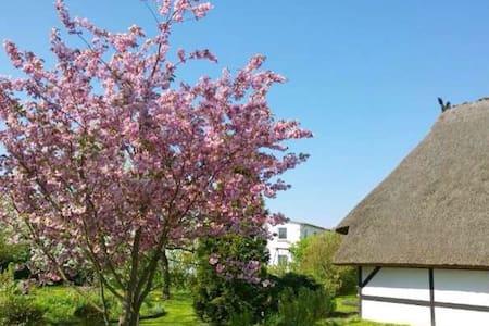 Ferienwohnung auf ehemaligem Bauern - Börgerende-Rethwisch - Casa