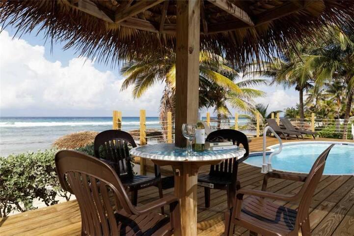 Beach Plum Villa (Villa)
