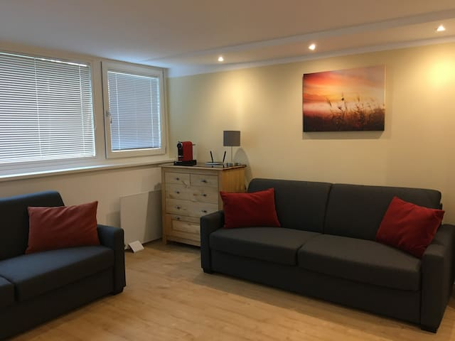 New garden flat+free parking+direct link to centre