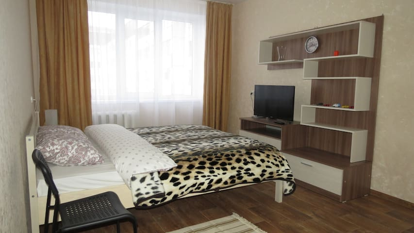 Апартаменты на Рокоссовского, Ледовый дворец