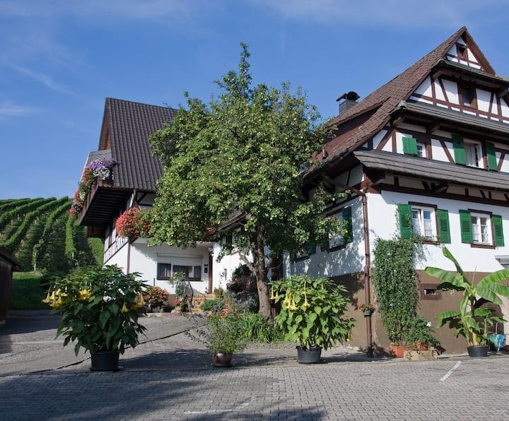 Wohnung im wunderschönen Fachwerkdorf // Alde Gott