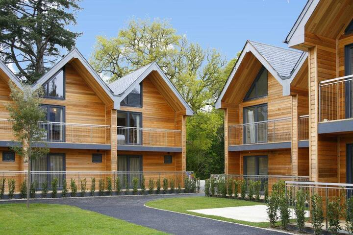 Northbrook Park Mews - Farnham - Hytte (i sveitsisk stil)