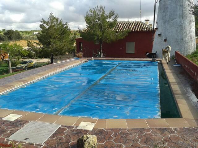 Grande villa con piscina & giardino