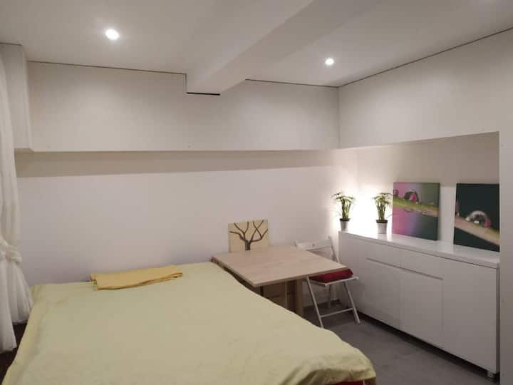 Simple studio A in central Zurich City + Parking
