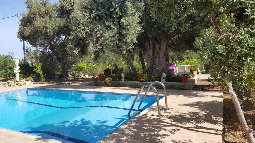 Afroditi in a small paradise corner in Crete!
