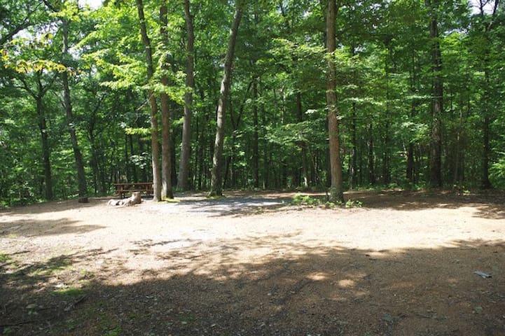 Primitive Camp Sites In The Hills Of W.VA.  3-A