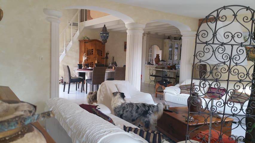 Magnifique pavillon dans village des Pyrénées - Juillan