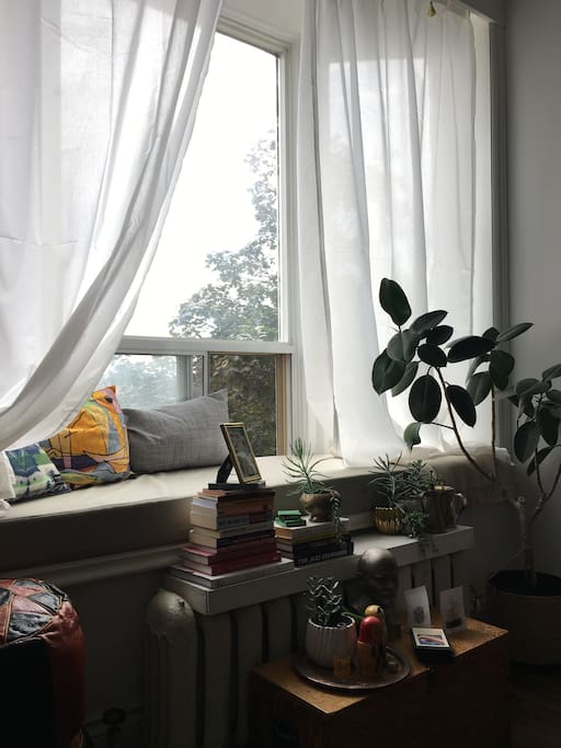 Rest up on the bay window in the living room