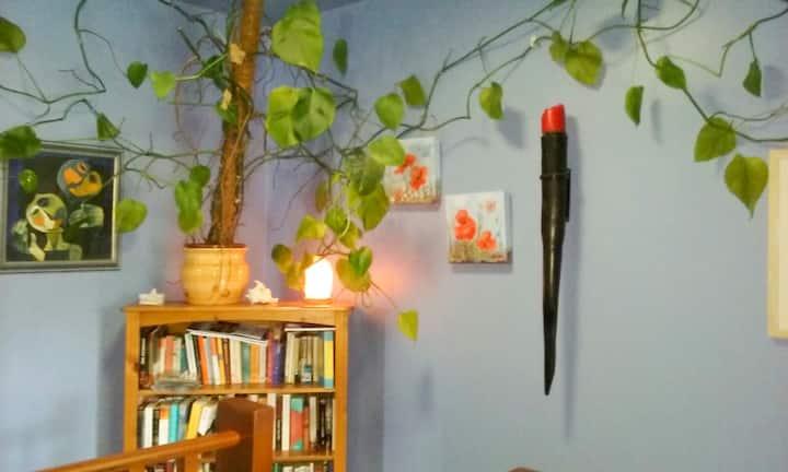 Single Room in Quiet Comfortable Home (Naas)