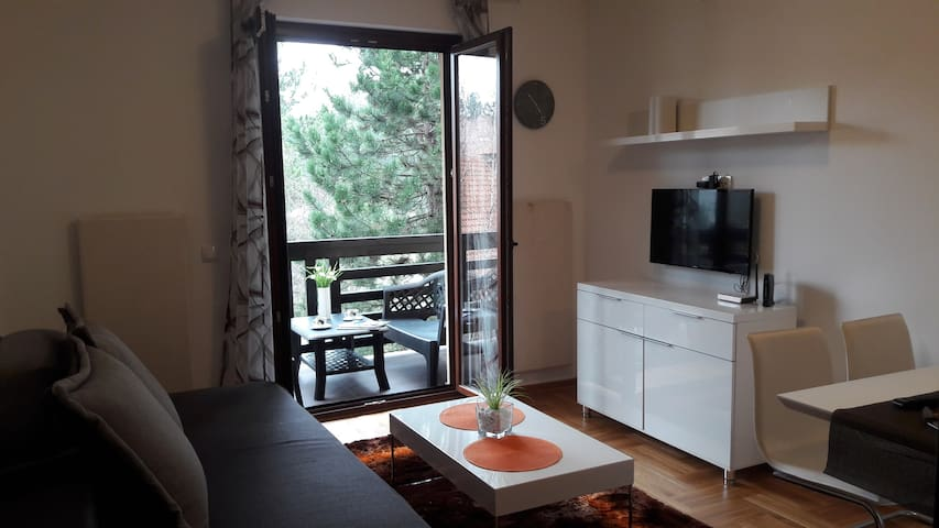Zelenkada 48 - Zlatibor - Appartement