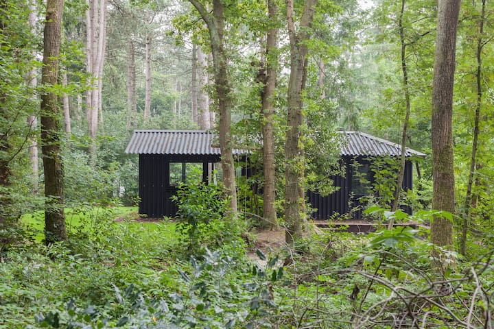 Design boshuisje in Friesland - Oudemirdum - 小木屋