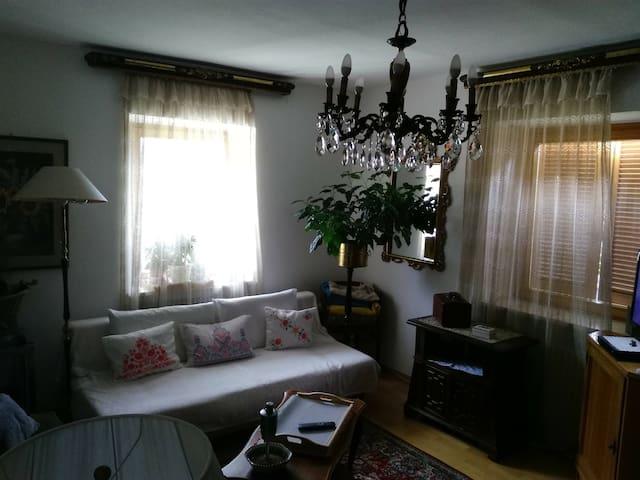 il salotto das Wohnzimmer the living room