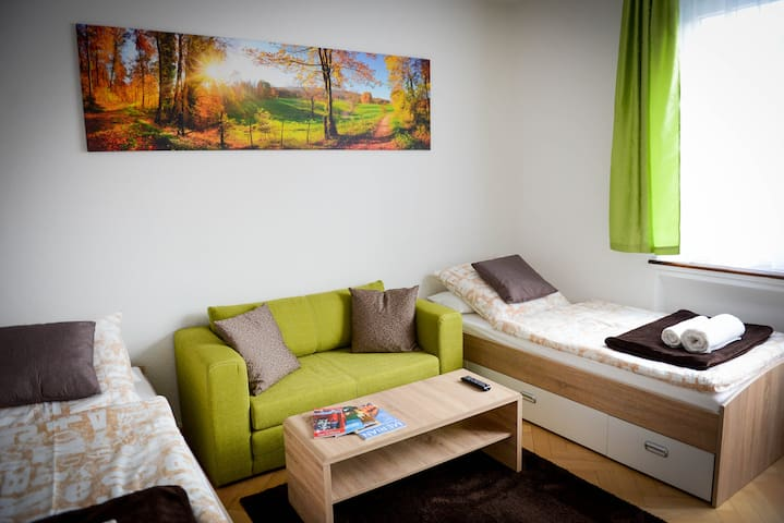Very central quiet room in the heart of Freiburg - Freiburg im Breisgau - Flat