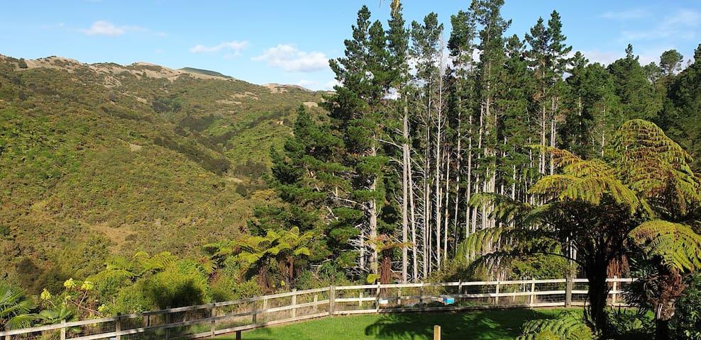 Bush View Hideaway - 15 Minutes to Raglan