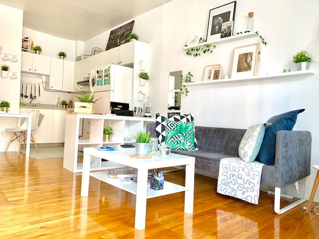 ☾☀︎Appartement Zen, Mile End, Rosemont Station☀︎☾