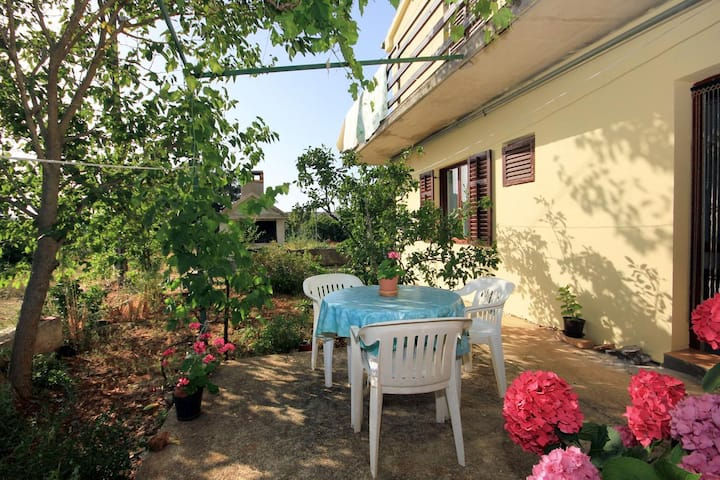 Two bedroom apartment with terrace Zaglav, Dugi otok (A-878-a)