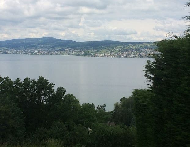 Quiet+picturesque location, only 1/2 h from Zurich - Wollerau - Apartment