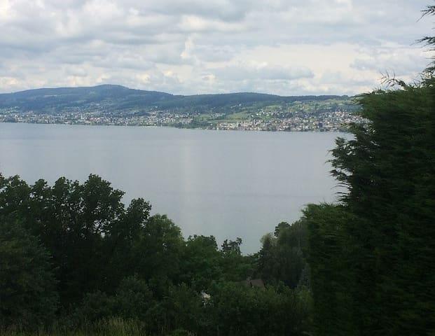Quiet+picturesque location, only 1/2 h from Zurich - Wollerau - Apartamento